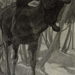 Bull, Charles Livingston_Bull Moose